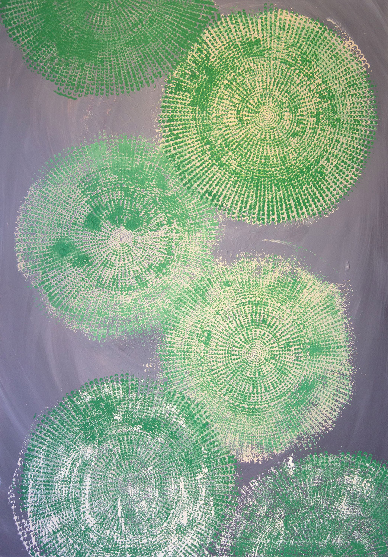 Seerosen Blätter